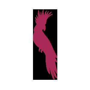 arkakuxovet veterinaria exoticos icon